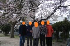 花見013